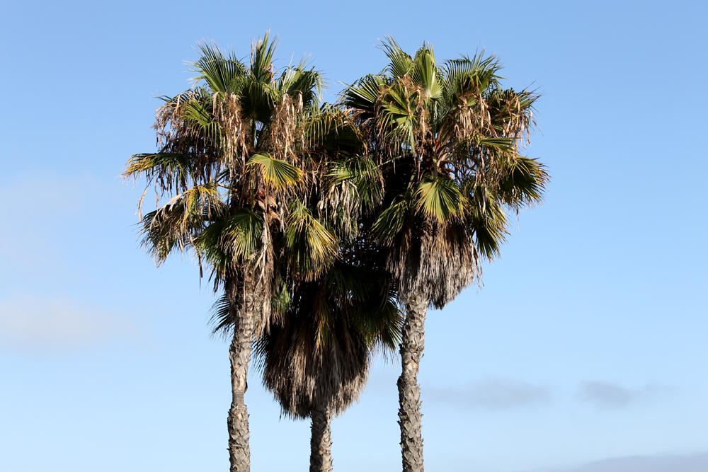 Long Beach, CA  Copyright Christina Lopriore 2013